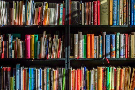 The Bi Bookshelf: Coming Out Stories
